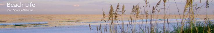 Gulf Shores Alabama Beach Real Estate, Beach Houses For Sale