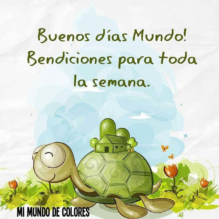 #Felizlunes #nuevocomienzo #buenavibra #bendicionesparatodos #mimundodecolores