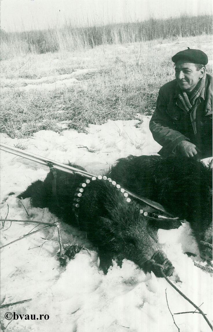 """Vânătoare de mistreţi la Spahiu, anul 1968, Galati, Romania. Imagine din colecțiile Bibliotecii Județene """"V.A. Urechia"""" Galați."""