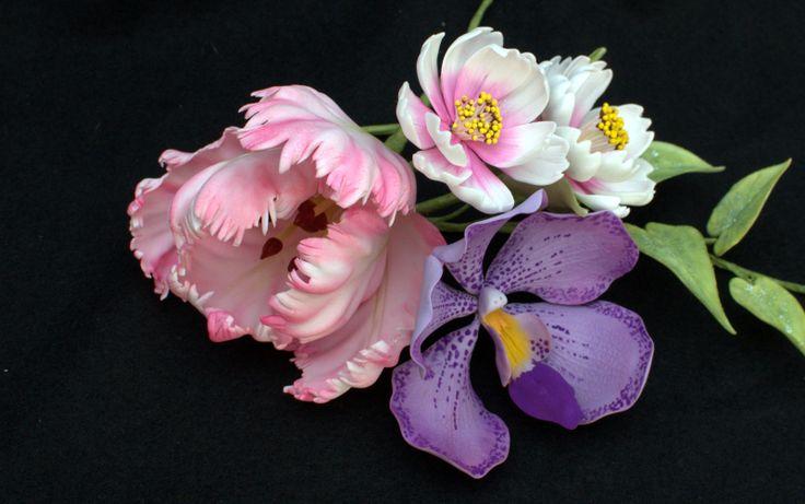 Parrot tulip, Vanda Orchid, Cosmos