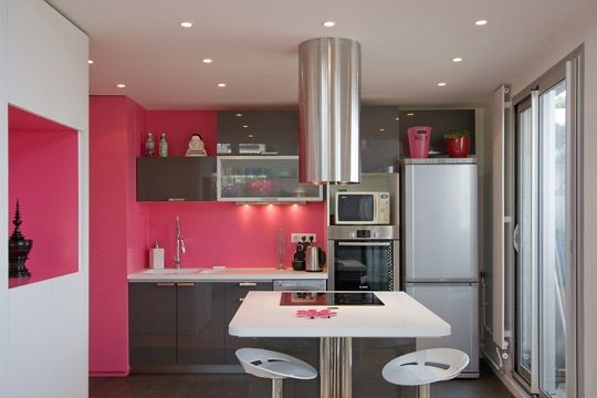 Pink and grey modern kitchen in Paris by French designer Delphine Maumot