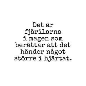 || Ebba Lillieström ||