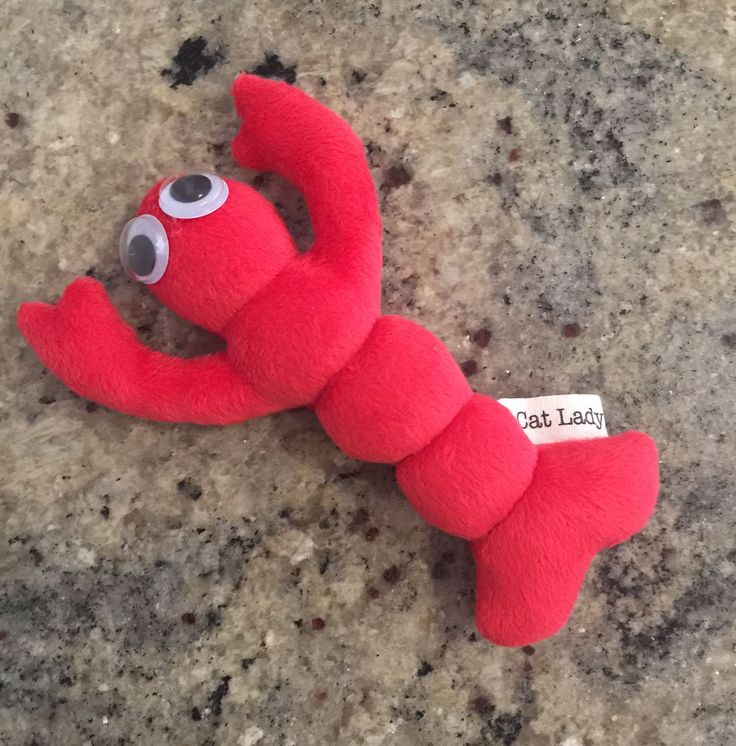 Larry the Lobster wants to come and play with your kitty!  Made with soft minky fleece and features big googly eyes!  #cat #cats #cattoys #catnip #valerian #catlady #kitty #cute #fuzzy #handmade #madeinmelbourne #melbourne #catsofaustralia #catsofmelbourne #catsofinstagram #catstagram #funkyfelines #lobster