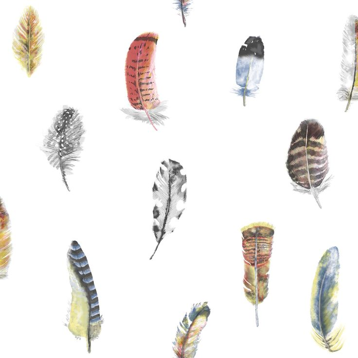 Multi-coloured Feather Motif wallpaper!