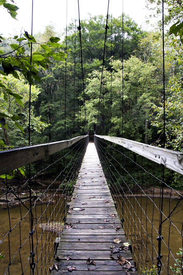 Sheltowee bridge / Red River Gorge / Kentucky, USA - I'll pass on walking across this bridge...bridge, right?