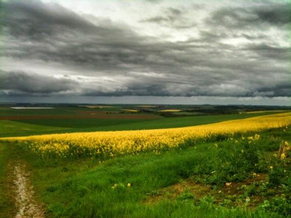 À la sortie du bois de la Brusse -Dravegny - Aisne