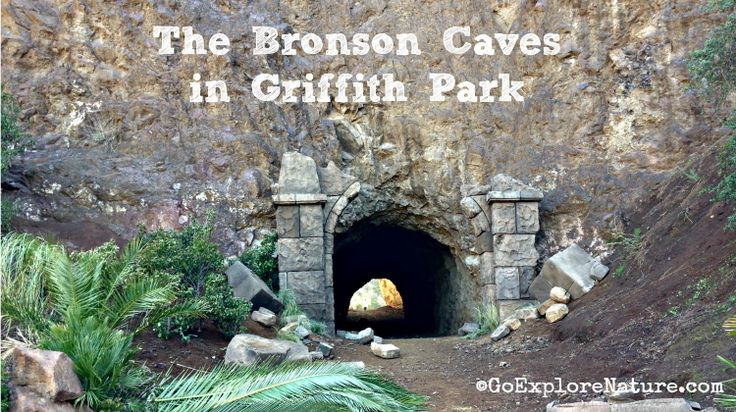 The Bronson Caves in Griffith Park offer a family friendly, short hike to the cave made famous by Batman. You might catch a glimpse of the Hollywood sign!