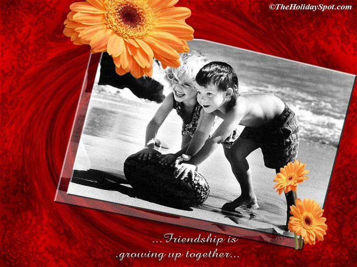 8d03291af5f7ee50e4a9309bb7b0d30f falling in love friendship - love means friendship.