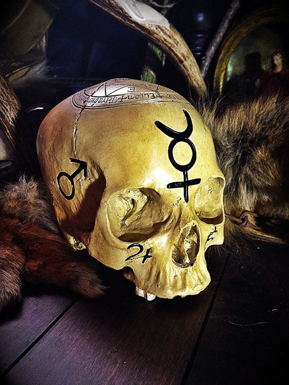 The Ritual Altar Skull - Witchcraft - Pagan - Altar - Divination - Fortune Telling - Wicca