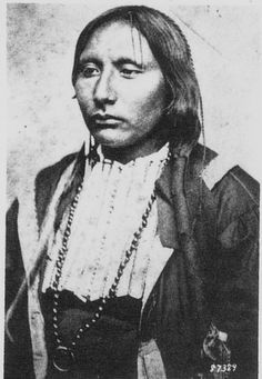 Big Tree (aka Addoeette or Adoeette) 1850-1929, was a Kiowa warrior and chief, and cousin of Santana. He gained notoriety for his participation in the Warren Wagon train raid (Salt Creek Massacre) in 1871, was imprisoned, but later advocated peace, converted to Christianity and became a deacon at the Baptist Church for 30 years.He was one of the models on the Indian Head nickel of 1913 Photo ca 1871.