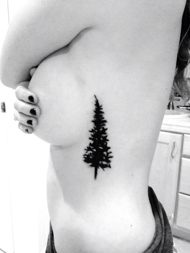Best 25 evergreen tattoo ideas on pinterest evergreen for Evergreen tree tattoo