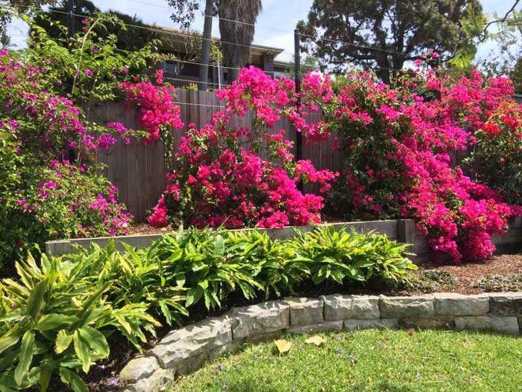 top terrace of garden