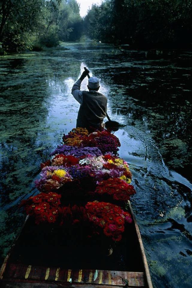 Paradise on Earth, #Kashmir, #India