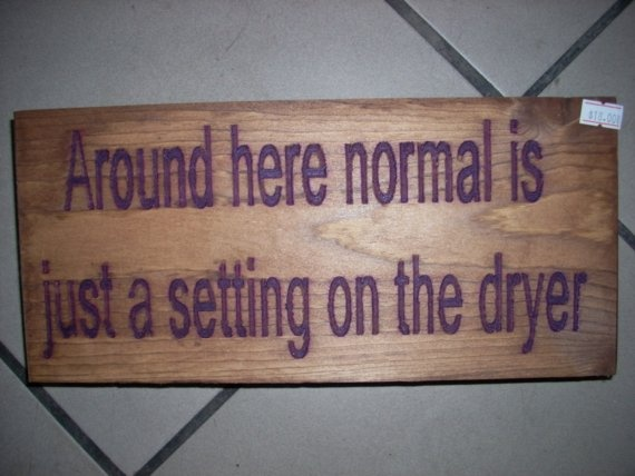 Around here normal is just a setting on the dryer by SaShayIn, $15.00 laundry room sign?