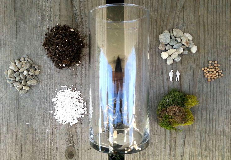 Herb Terrarium DIY MakersKit