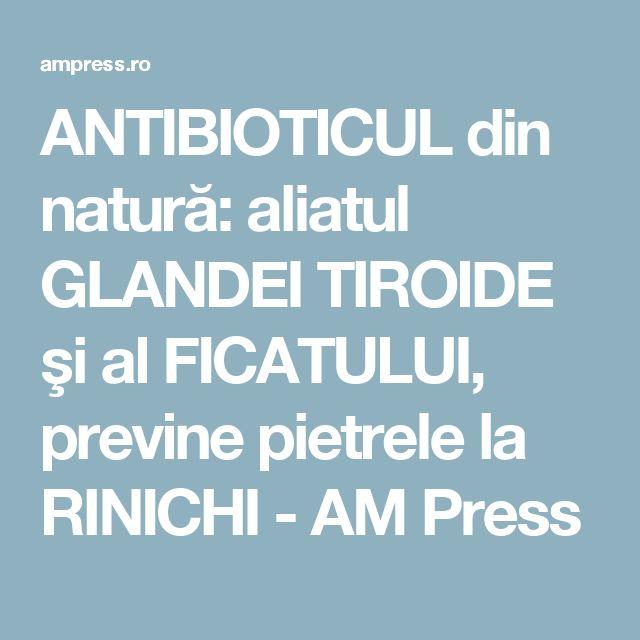 ANTIBIOTICUL din natură: aliatul GLANDEI TIROIDE şi al FICATULUI, previne pietrele la RINICHI - AM Press