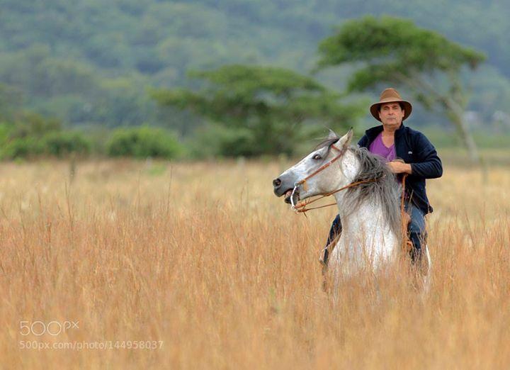 Comercial Novo Jetta 2015 - VOLKSWAGEN ruralcampofazendacavalocavaleiroproduçãocavalo crioulofilmagem http://ift.tt/21gGzoB