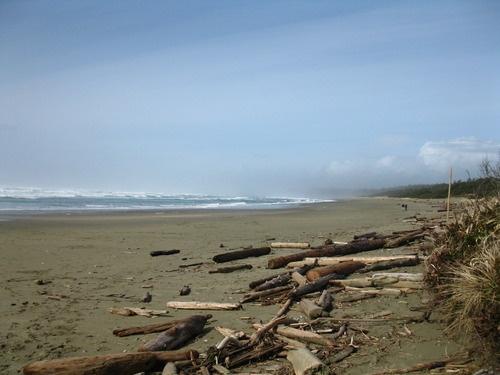 Wickaninnish Beach near Tofino, BC