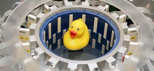 Wassergefüllter Messzylinder mit ringförmig angeordneten Ultraschallsensoren