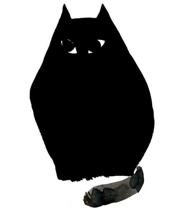 A shy black one
