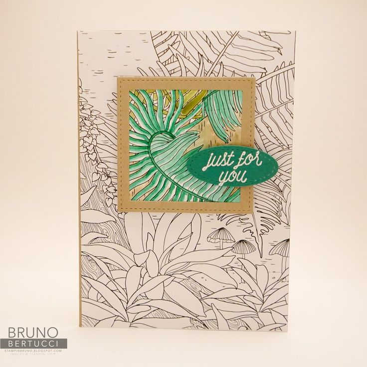 Bruno Bertucci | Stampin Up | stampinbruno | 2017 Occasions Catalogue | 2017 Sale-a-Bration Catalogue | Watercolour Pencils | Inside The Lines Designer Series Paper | So In Love | Stitched Shapes Framelits | Handmade Card