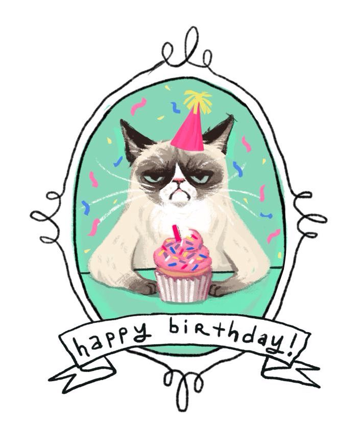 Happy Birthday Cat Wishes: 1000+ Ideas About Grumpy Cat Birthday On Pinterest