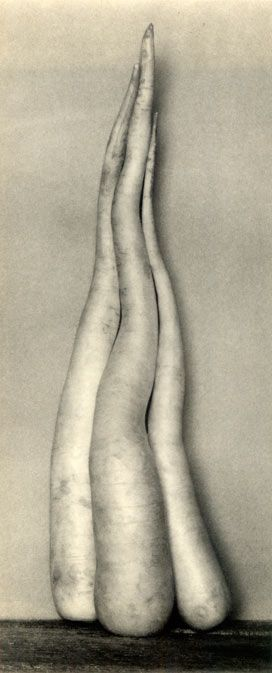 Edward Weston, Radishes