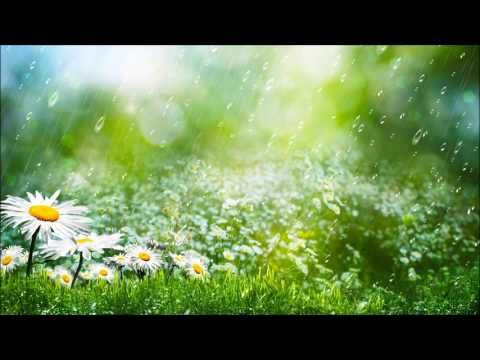 Rain Sounds for Sleeping   Nature Sounds Rain for Stress Relief, Studying, Sleeping 12 HOURS ☻ ☼ - http://LIFEWAYSVILLAGE.COM/stress-relief/rain-sounds-for-sleeping-nature-sounds-rain-for-stress-relief-studying-sleeping-12-hours-%e2%98%bb-%e2%98%bc/