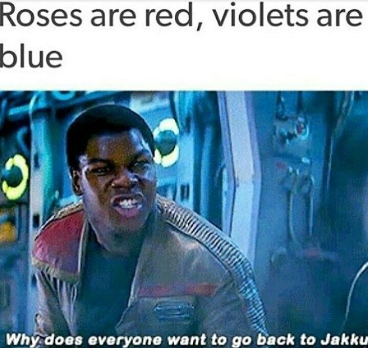 ROSES ARE RED VIOLETS ARE BLUE WHY DOES EVERYONE WANT TO GO BACK TO JAKKU!   OMG FIN