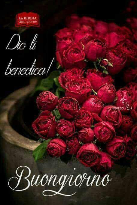 Pin Su Benedizioni Di Dio