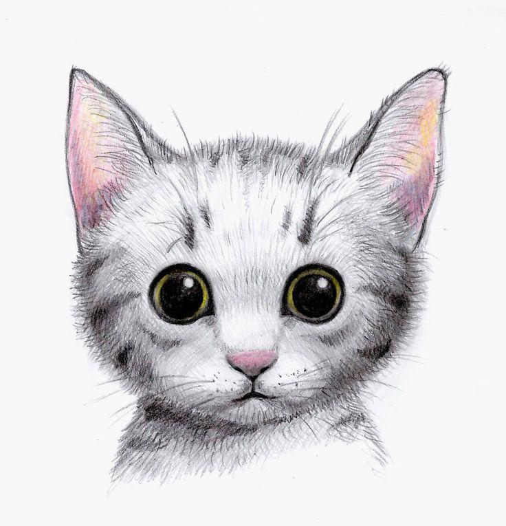 все картинки нарисованых котят самым будете знать