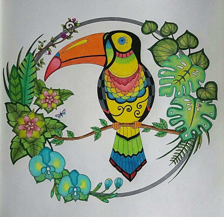 Toucan From Johanna Basfords Magical Jungle