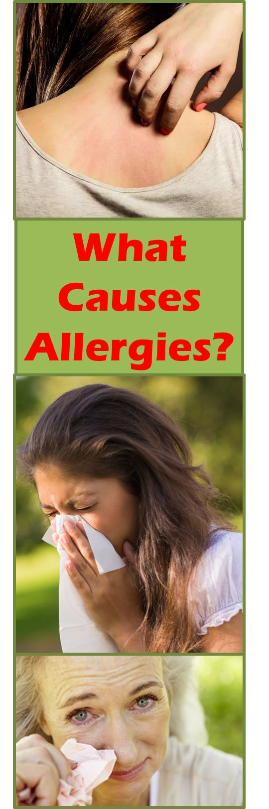 Almost 40 percent of the human population will suffer from allergies at some point in their lives. Itchy eyes, stuffy nose, coughing and sneezing are among the most common allergy symptoms and they can make any individual feel tired and weak. Many people often wonder if they can avoid allergies by doing things differently in their day-to-day routines. The answer is yes. However, before you change your schedule to avoid...