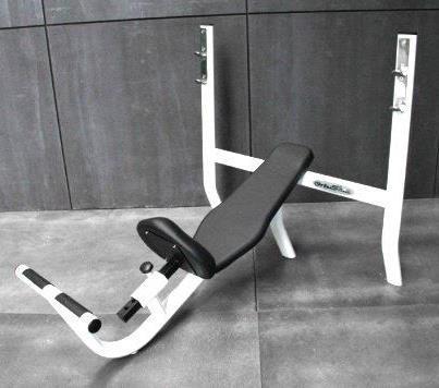 Ortus Fitness: Google+