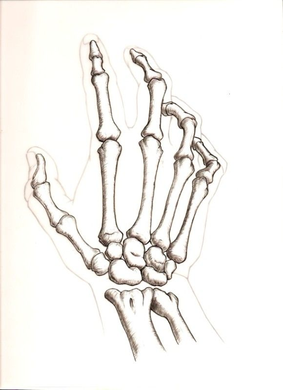 skeleton pictures hand