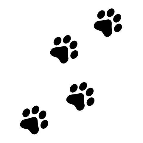 huellas de perro