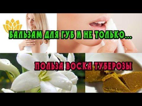 🍈🍓Сейчас уже пчелиный воск не так актуален. 🌺Потому что на его смену пришёл растительный. прекрасный растительный воск туберозы, можно применять в бальзамы для губ, кремах и даже масках для лица! 🌞🐬💓#полезная_информация #мыло_опт #мыловарение #органическая_косметика #натуральная_косметика #экологически_чистый #уход_за_кожей #уход_за_волосами #мастер_классы