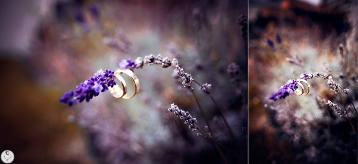 garbowska.com wedding photography - rings
