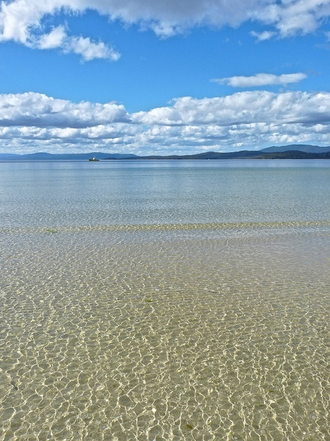 lighthouse jetty beach, bruny island, tasmania, prettiest beach i've seen?