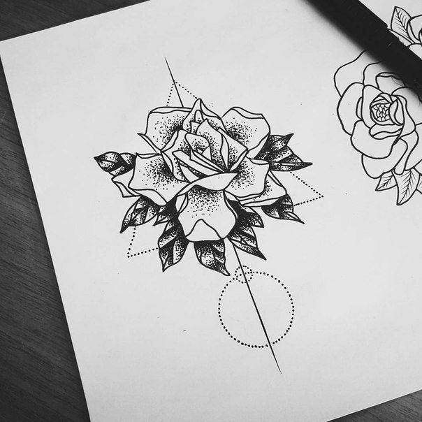 55 best Tatoo images on Pinterest Drawings Rose tattoos and Tattoo