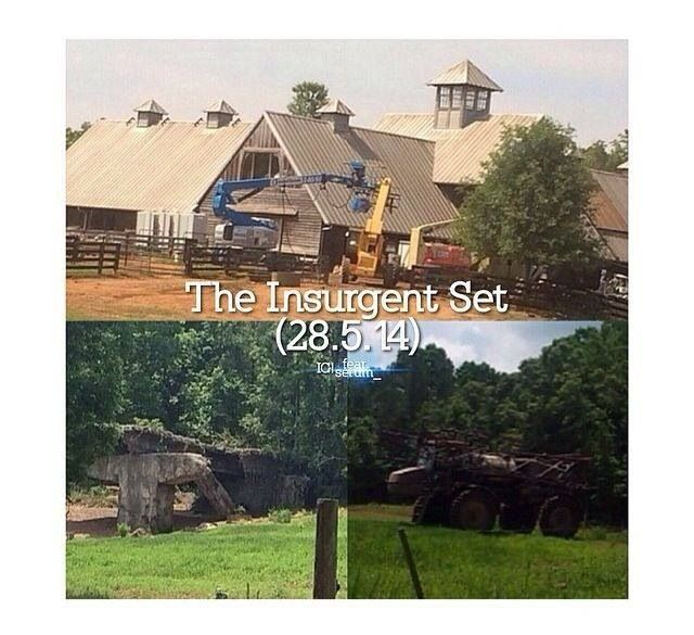 The Insurgent Set