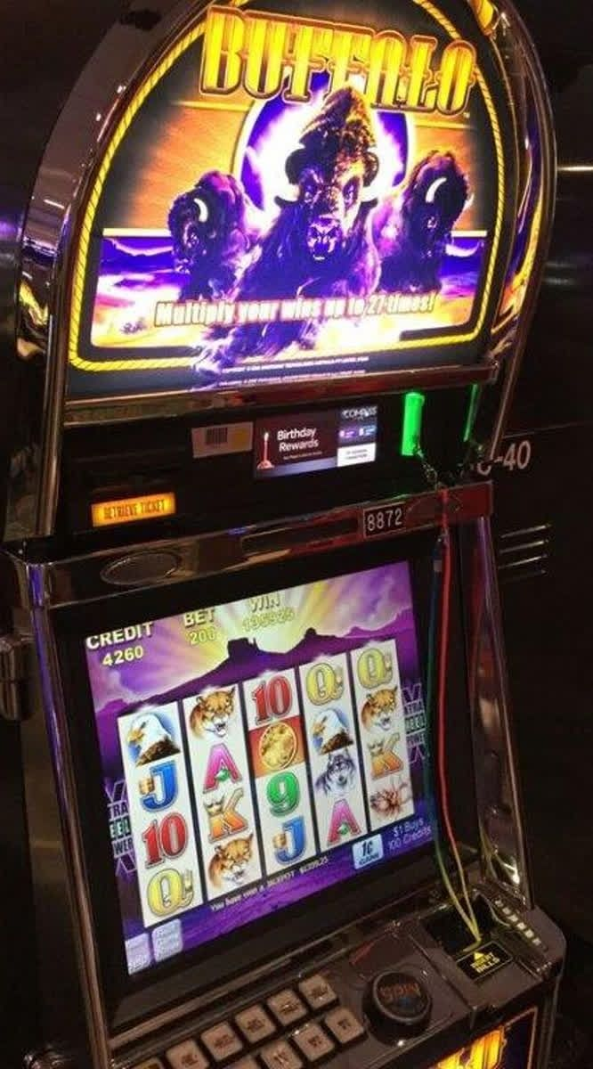 The Buffalo Slots Are Popular Here We Understand Why They Pay Big Jackpots Congratulations To The Guest From Midland Mi Wh Pure Fun Gaming Products Midland