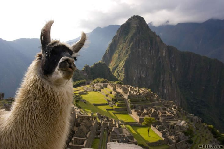 I want to hike the Inca trail to Machu Picchu in Peru