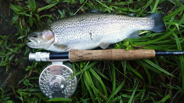 46 best images about mccurtain county on pinterest for Trout fishing oklahoma