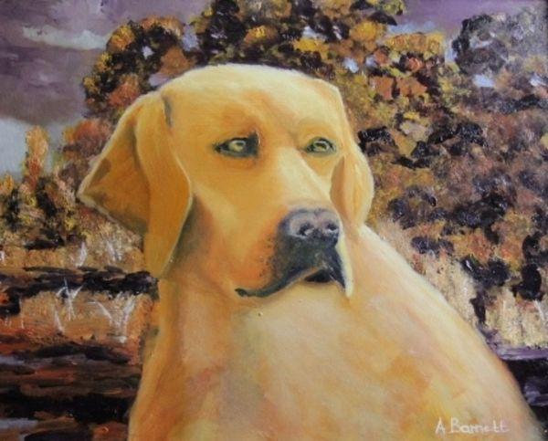 Golden Labrador - Oil on MDF