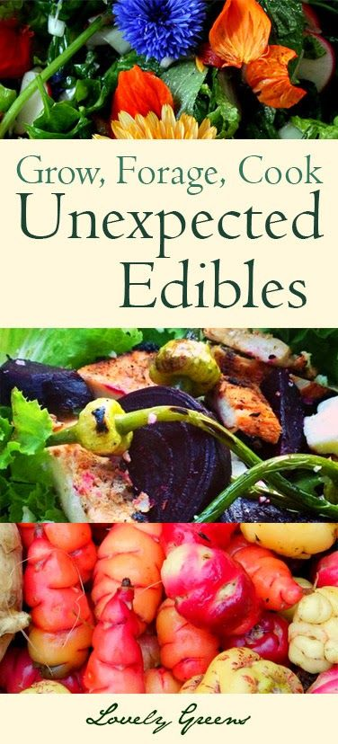 Unexpected Edibles...edible floweprs, unusual vegetables, and unique recipes! I wish they had a great foraging class in our area!