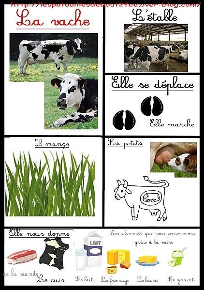 Simpatiche schede...i miei bimbi non sanno il francese...dovrò tradurle. Un'idea potrebbe essere: presentare la mappa con le sole immagini, preparare le striscioline con le frasi e chiedere di far corrispondere immagine a frase ai bambini.