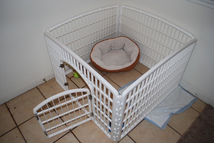 puppy playpen walmart - Google Search