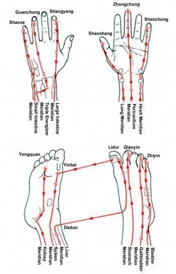 TCM: Meridians of the Hands & Feet #acupressure # ...