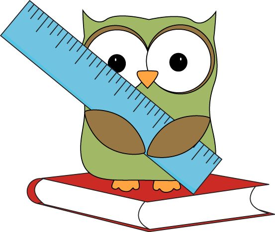Owl sitting on a book with a ruler.